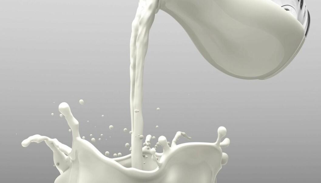 Hvor sunt er melk? Hvor begeistret er journalister i forskning.no for melk? Og velger vi studier etter hvilke matvarer vi liker best?