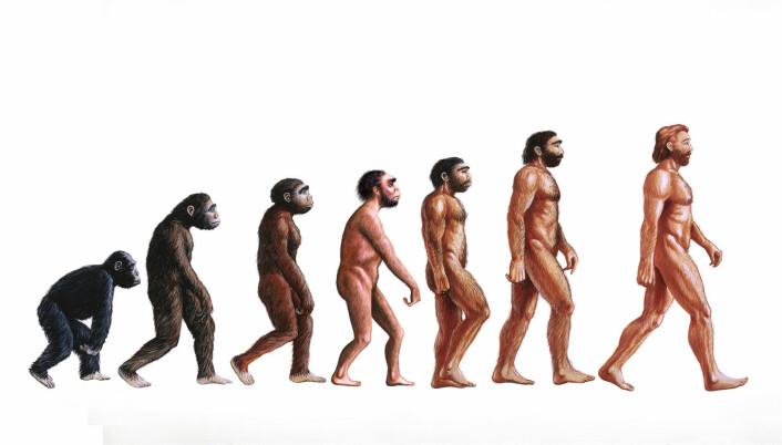 Her ser vi hva 20 millioner år kan gjøre. (Foto: (Illustrasjon: Science Photo Library/NTB scanpix))