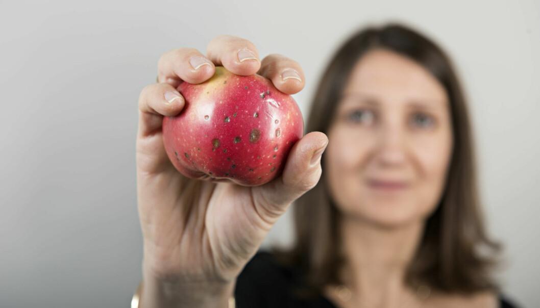 Hvordan få folk til å kjøpe epler med blåmerker?