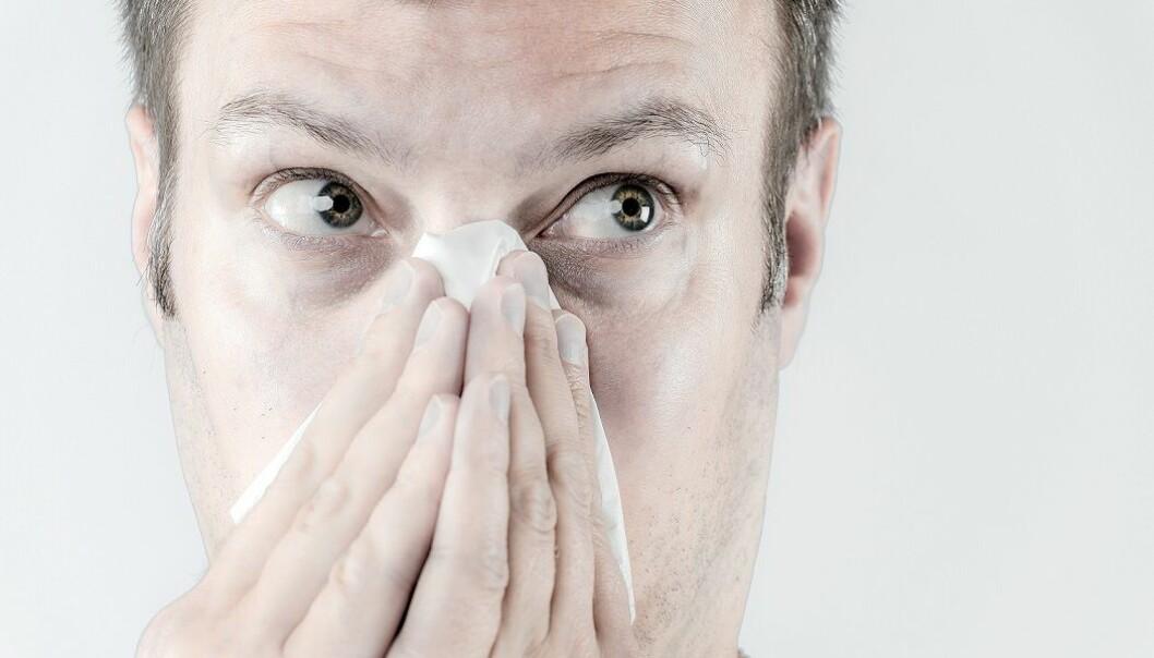 Når det gjelder bihuler, er det som oftest er snakk om en er viral infeksjon i begynnelsen. (Foto: Colourbox)