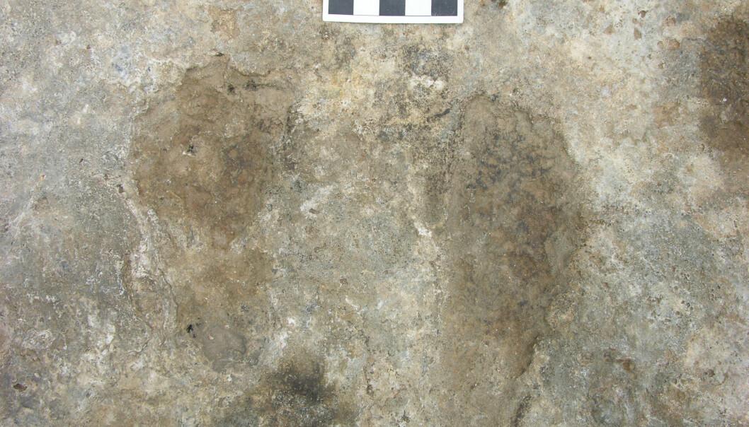 De mørke flekkene er fotspor etter folk som bevegde seg her for tusenvis av år siden. Leiren kom ut av varme kilder, og sporene ble satt for mer enn 7000 år siden. (Foto: Mark Aldenderfer)