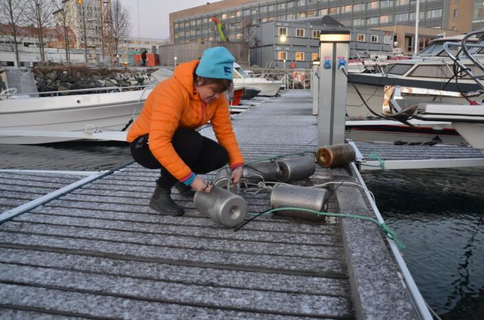 Dorte Herzke i polarhavna ved Framsenteret i Tromsø. Her klargjør hun de perforerte sylindrene som måler hvor mye plast som havner i havet. (Foto: Helge M. Markusson/Framsenteret)