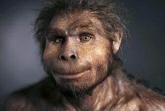 Hva spiste de første menneskene?