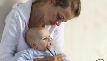 Fiskeolje til gravide forebygger astma hos barna