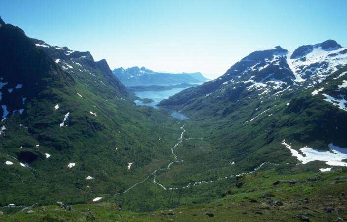 Raftsundet, Hadsel i Nordland. (Foto: Yngve Rekdal)