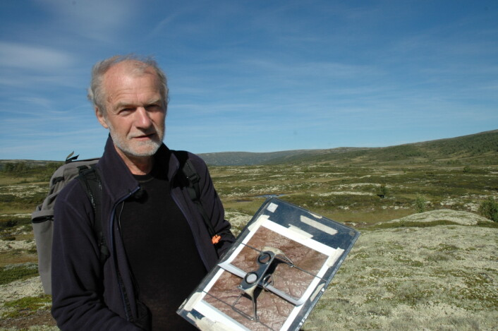 Yngve Rekdal fra Nibio i feltarbeid med vegetasjonskartlegging. (Foto: Jon Schärer)