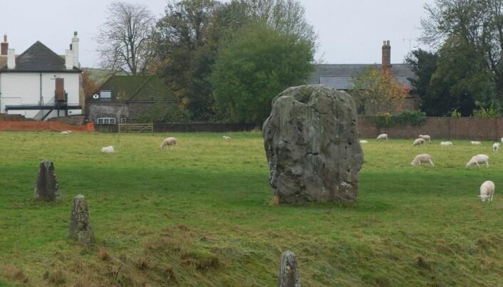 En bauta fra <i>henge</i>-en ved landsbyen Avebury. (Foto: Eivind Torgersen)