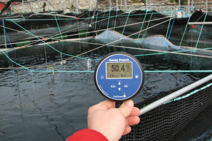 Forskerne brukte oksygenmålere til å måle hvor mye oksygen det var i vannet. (Foto: Frode Oppedal / Havforskningsinstituttet)