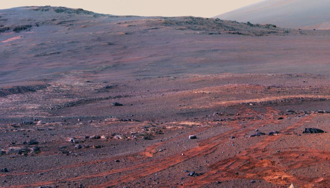 Et utsnitt av Opportunitys panorama. I bakgrunnen ser du kanten på Endeavor-krateret reise seg mot himmelen. I forgrunnen, roverens siste spor. (Foto: NASA)