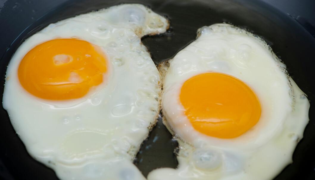 Effekten var ikke veldig stor, men likevel tydelig: Jo mer egg i kosten, jo større var risikoen for hjertesykdom og død. (Foto: HelloRF Zcool / Shutterstock / NTB scanpix)