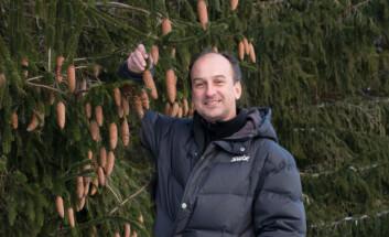 Seniorforsker Paal Krokene. (Foto: Erling Fløistad/ NIBIO)
