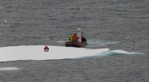 Bølger i isen påvirker Arktis. Å forstå isdønningene kan forbedre værvarsler og klimamodeller.