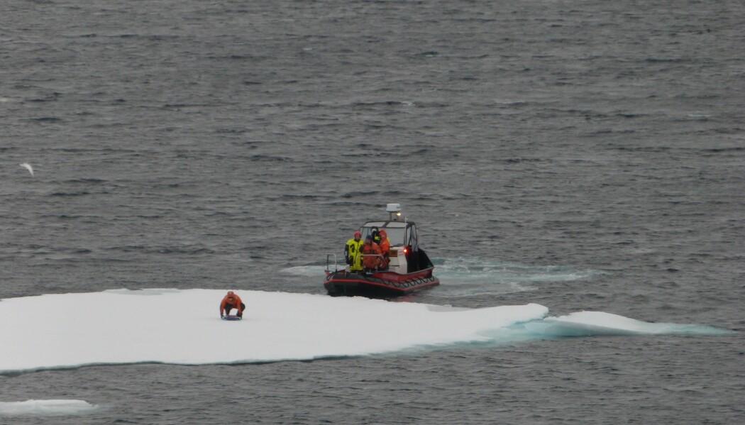 Den første bølgesensoren ble satt ut på et isflak og beveger seg nesten som en bølgebøye i åpent hav. (Foto: Lars R. Hole, Meteorologisk institutt)