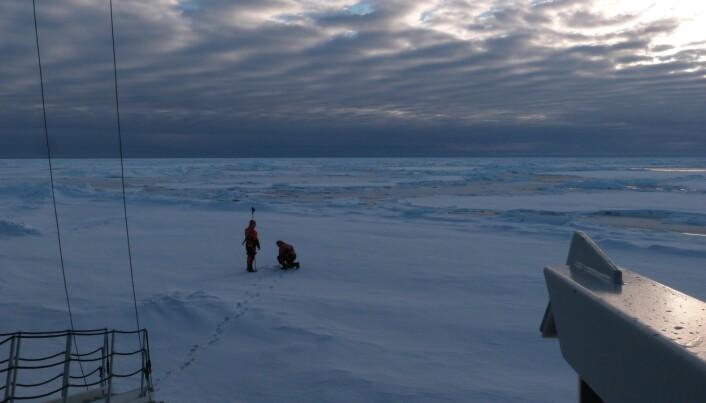 Isen var over to meter på det tykkeste stedet en bølgesensor ble plassert. (Foto: Lars R. Hole, Meteorologisk institutt)