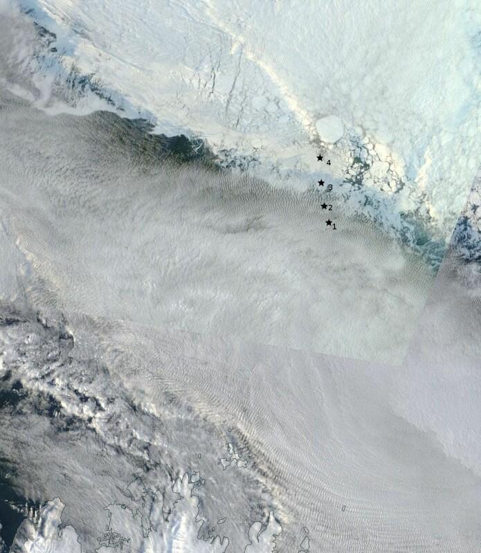 R/V Kronprins Haakon gikk fra Longyearbyen og nesten til 82.5 °N. Den nordligste ekskursjonen var utelukkende for å sette ut bølgesensorene, vist med stjerner. Den første (merket 1) ble satt ut på et isflak. Den siste (merket 4) ble satt ut i fast is. Kartet viser isdekket målt med det optiske MODIS-instrumentet 19. september (det er lett skydekke over åpent hav på bildet). (Foto: NASA Terra / Modis )