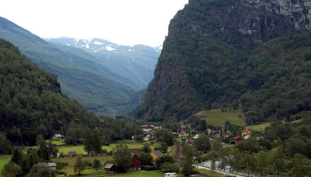 Mange skred etter siste istid har vore med på å skape det dramatiske landskapet i Flåmsdalen. Framleis er rasfaren i dalen stor. (Foto: Tomoyoshi Noguchi/Wikimedia Commons)