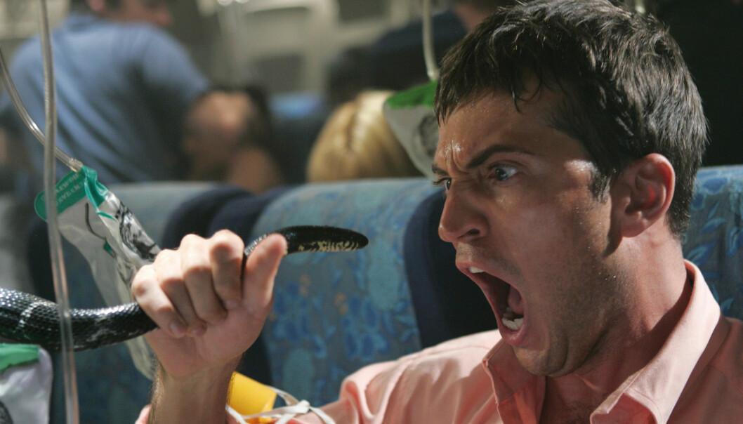 Å være redd for slanger er en av de vanligste fobiene. Her fra filmen Snakes on a Plane. (Foto: SF Norge AS)