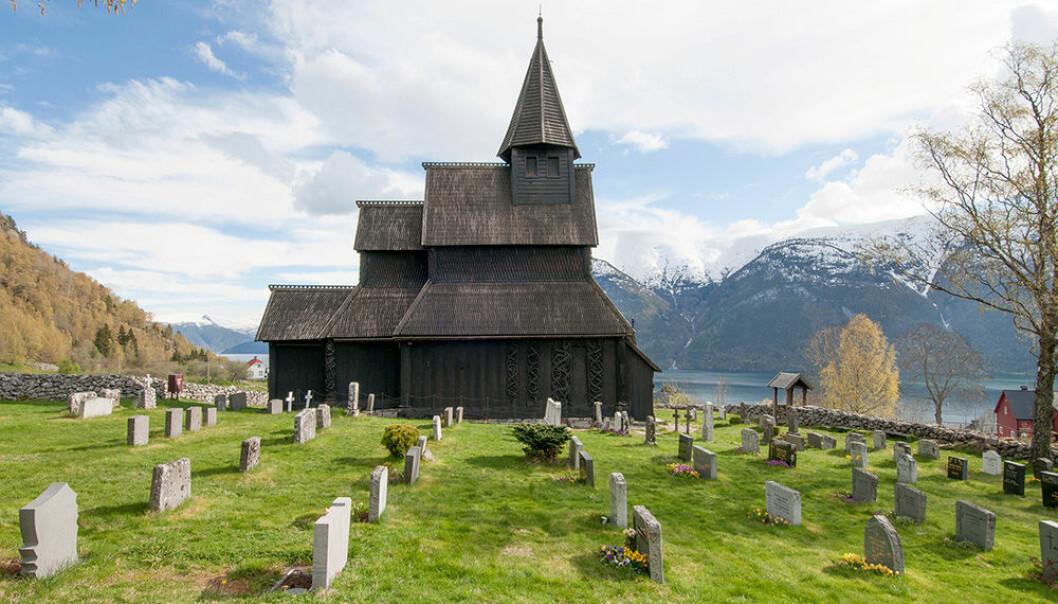 Den eldste daterte tømmerstokken i Urnes kirke begynte å vokse allerede i 765. (Foto: Leif Anker, Riksantikvaren)