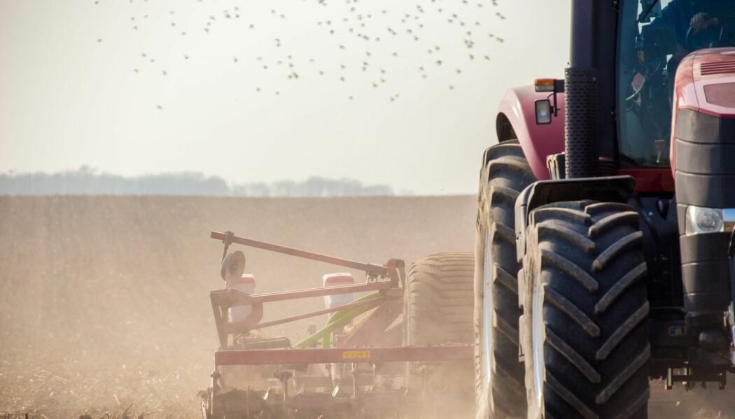 Krig og konflikt har mange årsaker. Kanskje kan en satsing på landbruk ta problemet ved roten. (Foto: Stockr, Shutterstock, NTB scanpix)