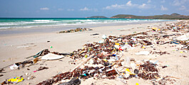 Forskningsnytt om plastsøppel