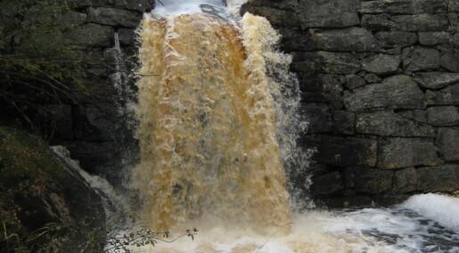 Vannet blir brunere i en våtere fremtid