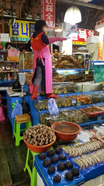På fiskemarked i Sør-Korea finner man et stort mangfold av arter, størrelser og kvaliteter. (Foto: Bjørg Helen Nøstvold/ Nofima)