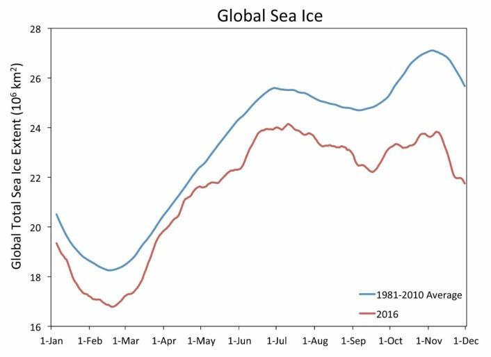 Sjøisen globalt er rekordlav for årstiden. (Bilde: W. Meier, NASA Cryospheric Sciences, GSFC)