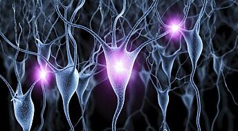 Overraskende resultater av Alzheimer-behandling med lys