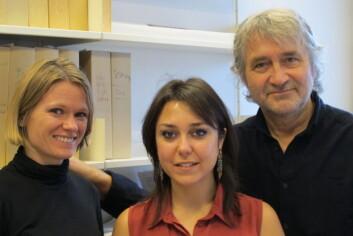 Alessandra Biancolillo i midten, med forskerne Tormod Næs og Ingrid Måge på hver sin side. De har veiledet henne i doktorgradsarbeidet. (Foto: Nofima)