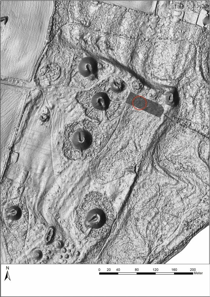 På en slette blant gravhaugene i Borreparken i Vestfold er det funnet en skipsgrav som sannsynligvis stammer fra vikingtiden. (Foto: Vestfold Fylkeskommune / NTB scanpix)