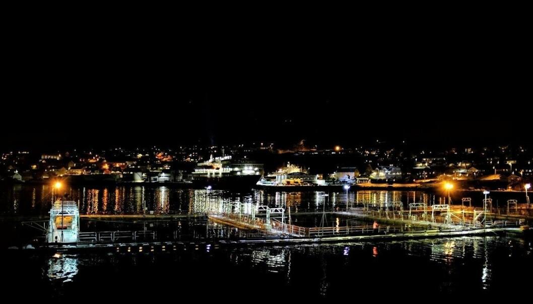 Skjervøy havn (Foto: Eirik Mikkelsen)