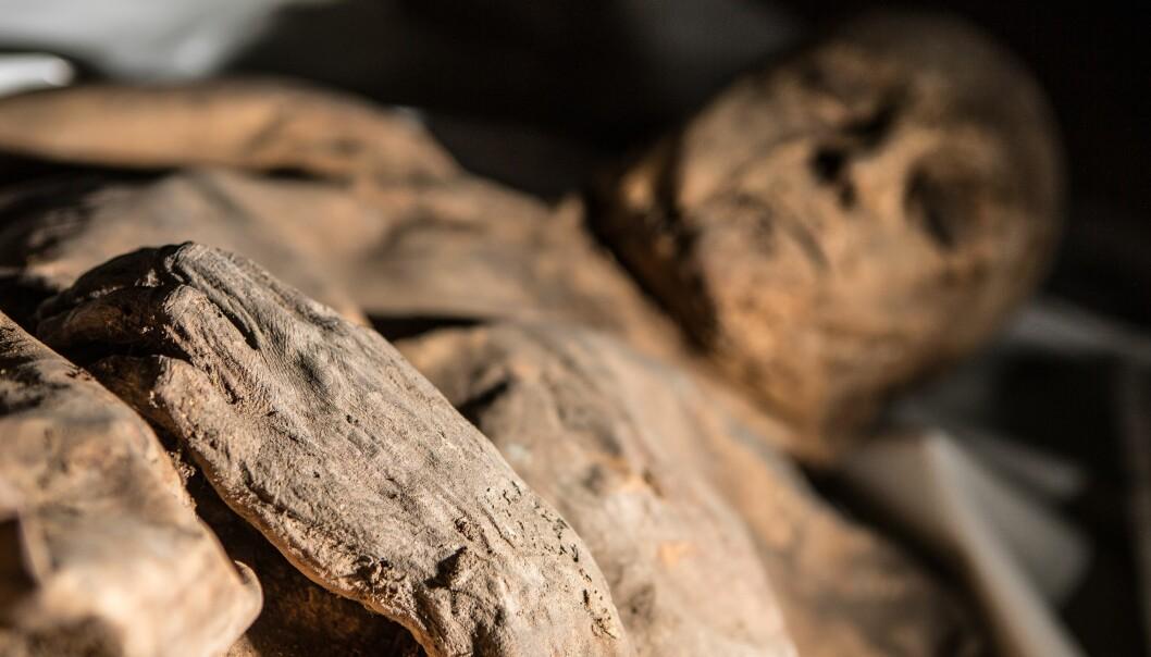 Hva kan denne mumien fortelle oss om en av historiens dødeligste sykdommer?