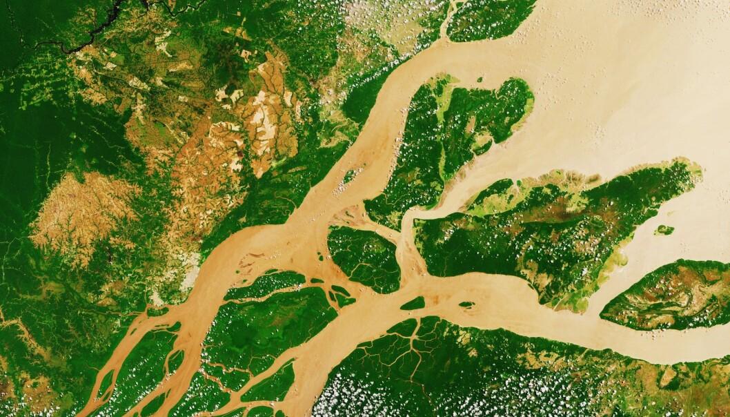 Deltaer er kjente for dyre- og plante-mangfold. Her ser vi et sattelittbilde av Amazonas-deltaet, som bare er en tiendel av størrelsen til det nyoppdagede ur-deltaet. (Foto: Lavizzara, NTB scanpix)