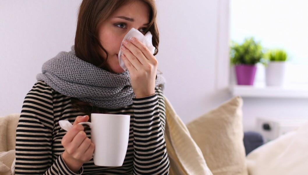 Det skader ikke å drikke noen ekstra kopper te for å lindre halsvondt. Men hvis du ikke har feber, trenger du ikke drikke mer enn vanlig når du har luftveisinfeksjon. (Foto: Shutterstock / NTB scanpix)