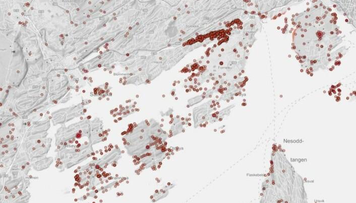 Registreringer av truede plantearter utenfor Sandvika i Bærum kommune. Her er det tett mellom funnene. Vi har prøvd å forutsi hvor truede arter finnes også i områder som ikke er like godt kartlagt. Skjermdump fra Artskart.