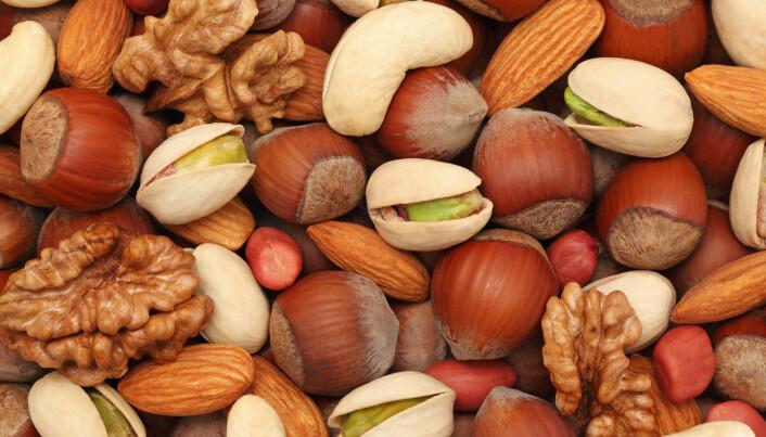 Det er trolig ikke så dumt å inkludere en håndfull nøtter i den daglige kosten, ifølge forskning.  (Foto: Artem Samokhvalov / Shutterstock / NTB scanpix)