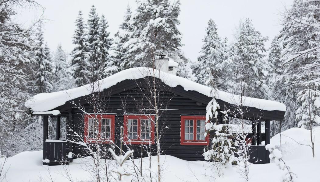 Forskerne ble forbauset over hvor ulikt familier ordner og fordeler råderett over hytta. (Foto: Haakon Harriss, Norsk Folkemuseum)
