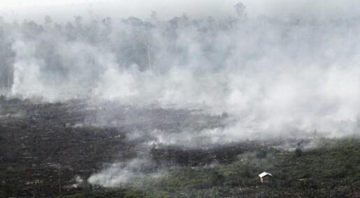 Drastisk forverring av luftkvaliteten i Indonesia