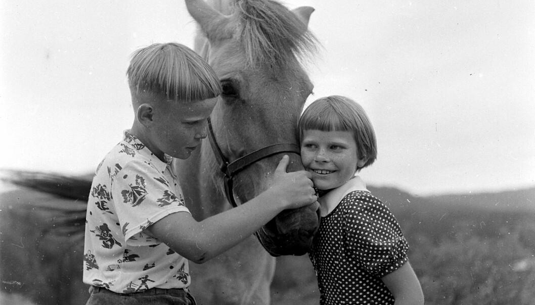 Torgeir og Åshild fra Nissedal klapper hesten hjemme på gården, før de skal reise med fly til Oslo. Den turen lagde Billedbladet NÅ en reportasje om på 1960-tallet. I mer enn hundre år har barn som Torgeir og Åshild fått navn med røtter i norrønt språk. Nå er det nesten slutt.  (Foto: Billedbladet NÅ/Digitalarkivet)