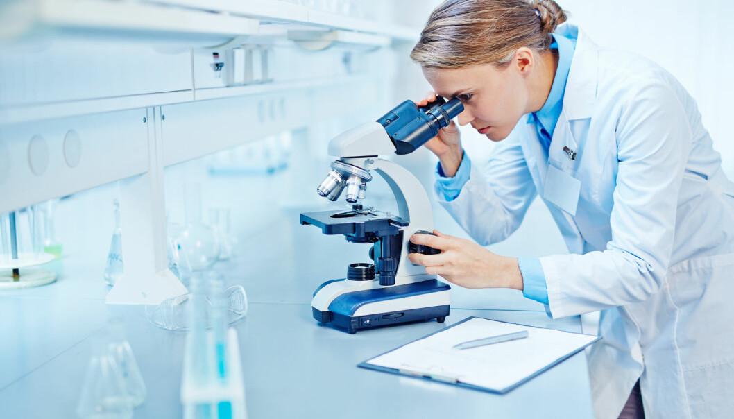 Unge, kvinnelige forskere ser mørkere på forskning som fremtidig yrke om de er midlertidige. Menn er mer optimistiske.  (Foto: Shutterstock/NTB Scanpix)
