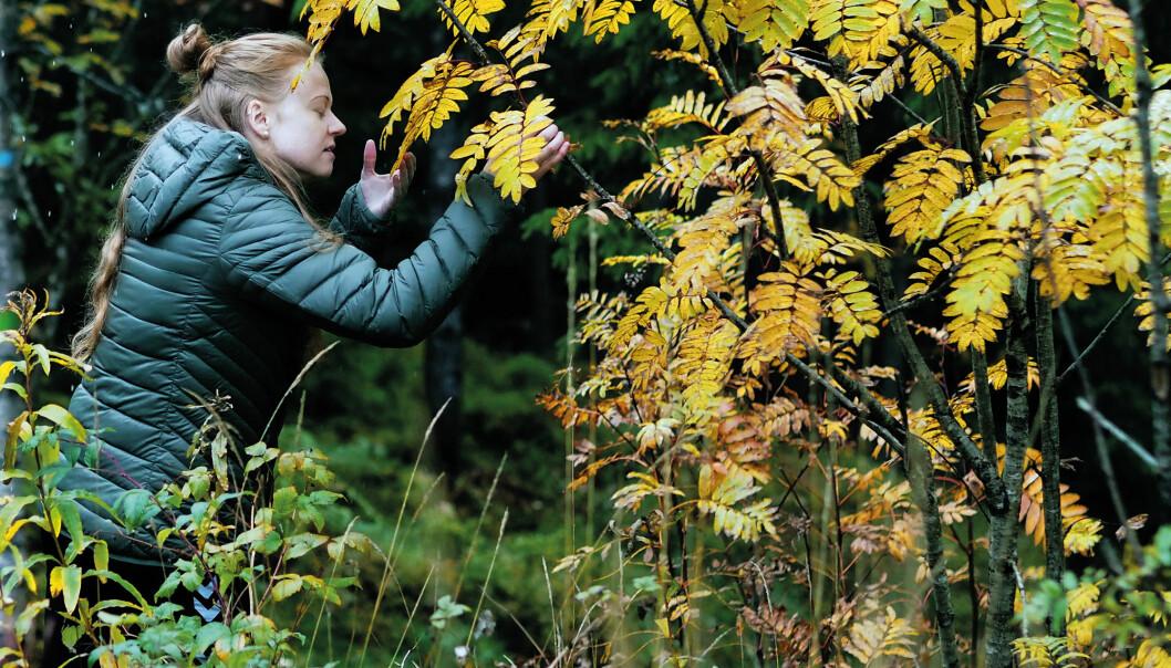Studentene gjenforenes med Moder Jord. Nærhet og kjærlighet til naturen er våpen i kampen mot ødeleggelsene. (Foto: Ola Sæther)