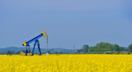 Kommentar: Hva er vitsen med biodiesel?