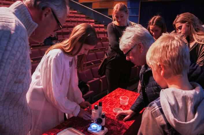 Aurora viser mikrometeoritter i mikroskop. (Foto: Arnfinn Christensen, forskning.no)