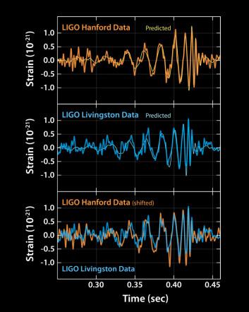 Disse grafene viser signalene av gravitasjonsbølger som påvises ved LIGO- observatoriene i henholdsvis Livingston, Louisiana, og Hanford, Washington. Signalene kom fra to fusjonerende svarte hull, hver på cirka 30 ganger massen til vår sol, som lå 1,3 milliarder lysår unna. (Foto: Ligo)