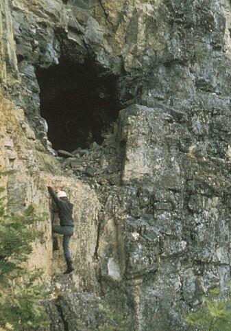 Gruveinngangene i Årdal lå høyt over bakken. Her klatrer professor Johannesen opp til en av dem for 40 år siden da han holdt på med hovedoppgaven sin. (Foto: B.I. Berg/Norsk Bergverksmuseum)