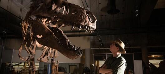 Verdens tyngste Tyrannosaurus rex
