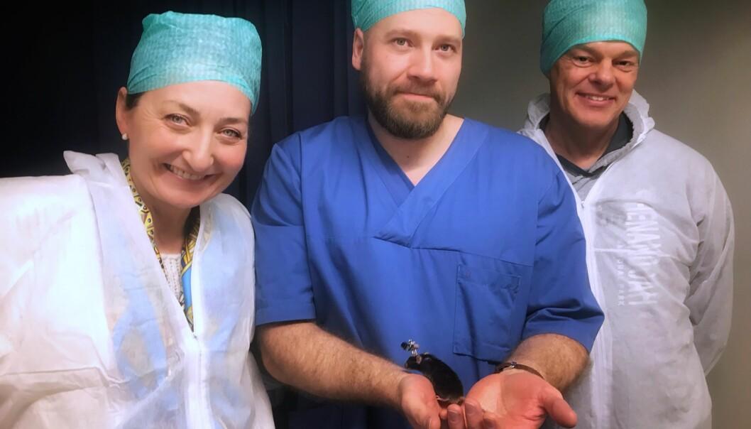 May-Britt Moser, Øyvind Arne Høydal og Edvard Moser viser fram en av forsøks-musene. (Foto: Rita Elmkvist Nilsen, Kavli Institute for Systems Neuroscience )