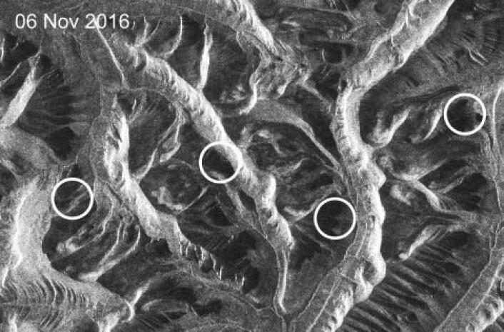 Et utvalg av skred er markert med sirkler. (Foto: Copernicus / ESA)