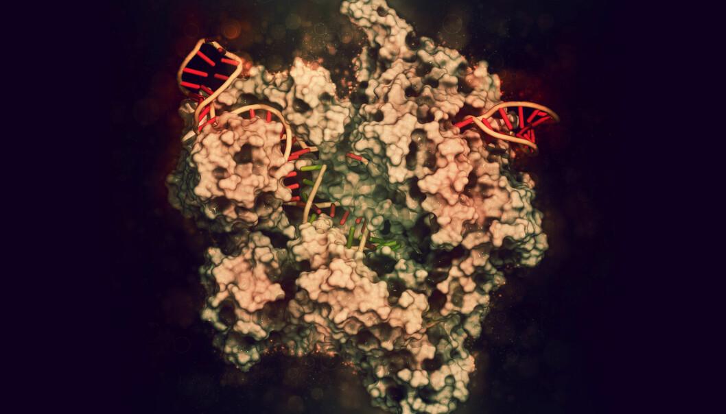 Illustrasjon av CRISPR Cas9, et verktøy vi kan bruke til å redigere DNA. Det er bygd på en teknikk bakterier bruker til å forsvare seg mot virus.  (Foto: molekuul_be / Shutterstock / NTB scanpix)