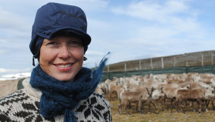 Alle reineiere som Kathrine Ivsett Johnsen har snakket med ønsker seg mer reelt selvstyre for reindriften. (Foto: privat)